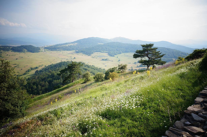 velingrad-paysage